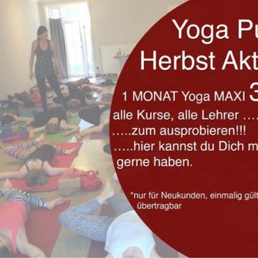 Yoga Pur Herbst Aktion - 1 Monat Yoga Maxi für nur 39€